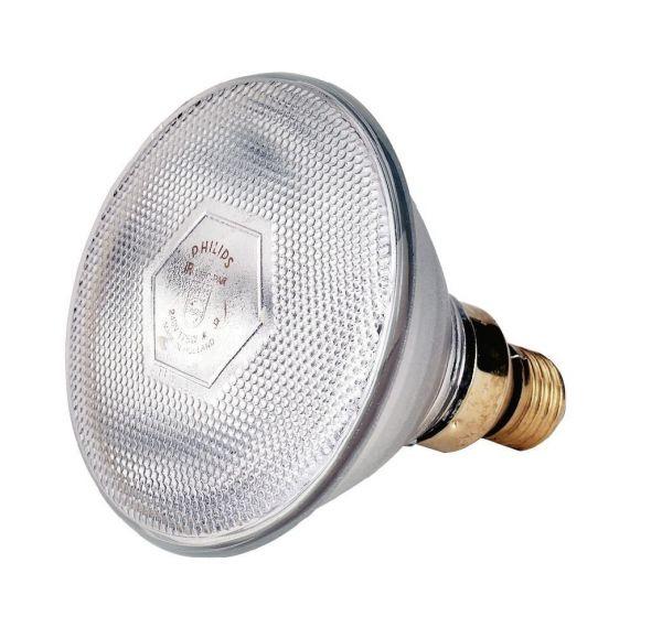Philips Infrarot-Sparlampe, weiß, 100 Watt, für Infrarot-Aufzuchtstrahler, Wärmestrahler