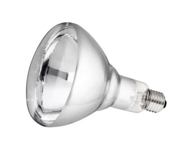 Philips Hartglas-Infrarotlampe, weiß, 250 Watt, für Infrarot-Aufzuchtstrahler, Wärmestrahler
