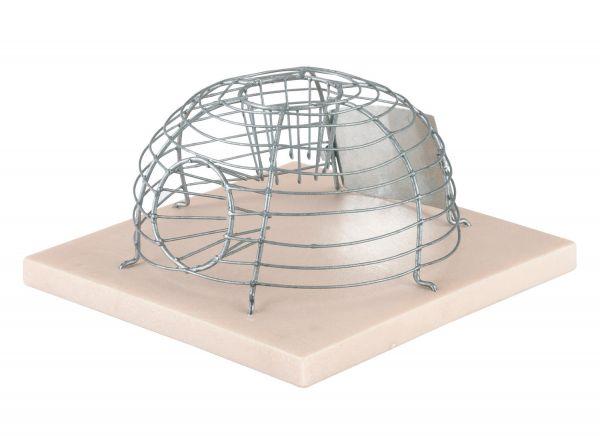 korb mausefalle alive lebendfalle f r m use 15x15x7 5cm. Black Bedroom Furniture Sets. Home Design Ideas