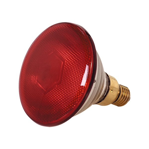 Eider Infrarot-Sparlampe, rot, 100 Watt, für Infrarot-Aufzuchtstrahler, Wärmestrahler